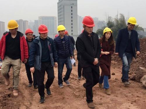 刘常委调研市民中心广场项目建设