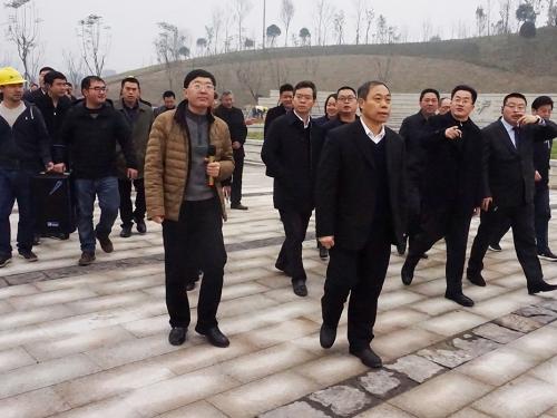 市委书记蒋辅义带队调研长江生态湿地公园