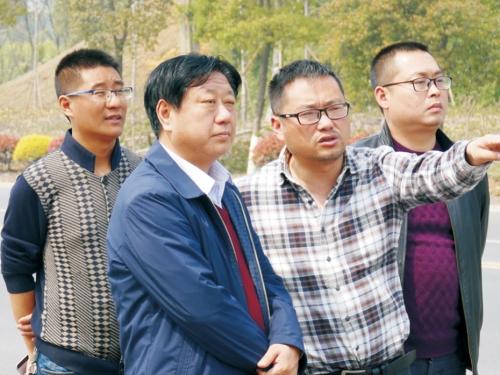 文联主席虞潜指导纳溪区城市道路景观品质提升工程