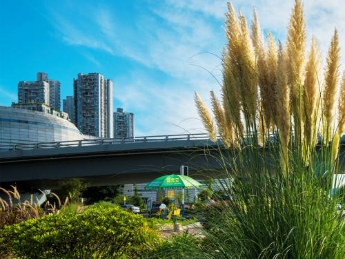 沱江二桥加宽改造工程附属景观建设项目