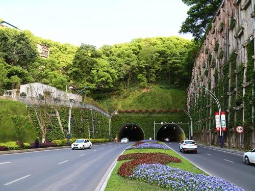 忠山隧道绿化工程