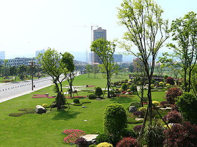 园林绿化设计建设